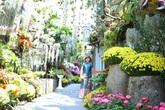 Khu vườn toàn những cây độc lạ của người phụ nữ yêu thiên nhiên ở Cần Thơ