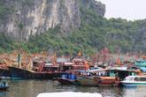 Bão số 2: Cấm tàu du lịch trên Vịnh Hạ Long