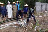 Thanh Hóa: Xử phạt Công ty Nicotex Thanh Thái hơn 400 triệu đồng