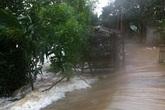 Hàng trăm ngôi nhà bị tốc mái, hàng nghìn hecta đầm chìm trong nước