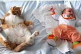 Không thể nhịn cười với chùm ảnh bé hài hước khi ngủ