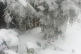 Hình ảnh tuyết rơi tuyệt đẹp trên núi ở Sa Pa