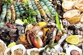Mầm họa giun sán từ những món ăn khoái khẩu