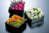 5 cách cắm hoa trẻ trung, đầy ấn tượng