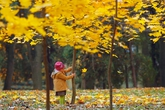 Ngắm sắc màu tuyệt đẹp của mùa thu khắp thế giới