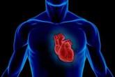 """Tìm thấy gene làm """"tan nát"""" trái tim"""