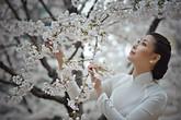Hà Kiều Anh đẹp tinh khôi trong áo dài trắng