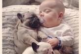 Chùm ảnh cực đáng yêu và hài hước về bé với cún con