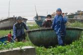 Cơn bão rất mạnh đang đi vào thành phố Đà Nẵng