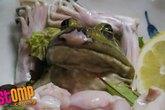 Kinh hãi món ếch sống ở Nhật Bản