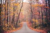 """Những """"thiên đường"""" mùa thu đẹp nhất thế giới"""