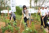 """Hưởng ứng chiến dịch """"làm cho thế giới sạch hơn 2013"""" tại Lâm Đồng"""