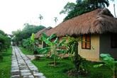 Mái nhà Việt xưa và nay
