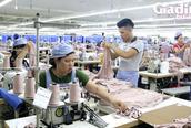 Phú Thọ: Đa dạng giải pháp hỗ trợ và tạo việc làm cho người lao động