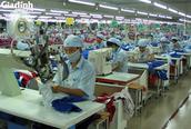 Quảng Trị: Tạo mọi nguồn lực giải quyết khó khăn cho người lao động