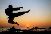 Ai là thiên hạ đệ nhất võ Việt?