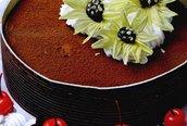 Học làm bánh: Bánh Tiramisu