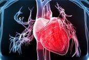 Căn bệnh đáng sợ, gây chết người nhanh hơn ung thư: Bạn có thuộc nhóm người dễ mắc?