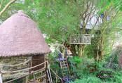 """Nhà cây """"độc nhất vô nhị"""" ở Hà Nội mà ai cũng muốn đến thăm một lần"""