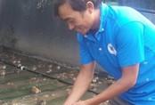 8X Ninh Bình mỗi năm kiếm gần nửa tỷ đồng nhờ nuôi ếch ộp