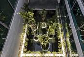 Biệt thự Sài Gòn có giếng trời rộng 48m2