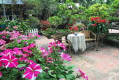 Khu vườn rộng đến nghìn mét vuông, trăm hoa đua nở ở ngoại thành Hà Nội của người phụ nữ có niềm yêu hoa đến cháy bỏng