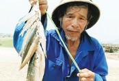 Thông thả buông cần câu cá chày mắt đỏ quý hiếm kiếm nửa triệu đồng một ngày