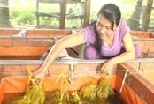 Nuôi lươn không bùn, người phụ nữ thu lãi 25-30 triệu/tháng
