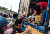 Hà Nội: Xếp hàng giữa trưa nắng tranh mua 17 tấn sầu riêng ế