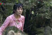 Hàng loạt phim Việt tạm dừng phát sóng