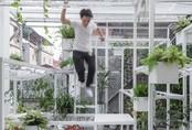 Tầng thượng xanh của KTS Việt lọt Top 10 công trình kiến trúc tác động tích cực đến xã hội 2017