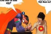 Tràn ngập lời khen tuyển Việt Nam trên Internet