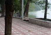 Hà Nội: Bơi ra tháp Rùa mặc nhiều người can ngăn, người đàn ông đuối nước ở hồ Gươm