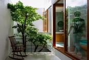 4 khối lập phương giúp ngôi nhà Đà Nẵng sáng bừng, tràn đầy nắng gió, cây xanh