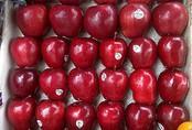 Vì sao táo ngoại để được lâu, khi rửa thấy vỏ nhớt?