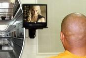 Người đàn ông thích ngồi tù để được xem truyền hình miễn phí