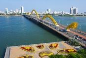 Ngắm đường hoa hơn 6 tỷ ở Đà Nẵng