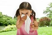 Cha mẹ phải ân hận sau này nếu trẻ hắt hơi sổ mũi nhưng không điều trị triệt để