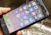 Apple hướng dẫn cách cấp cứu từng dòng iPhone khi bị vô nước