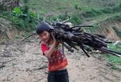 """VIDEO: Hé lộ cuộc sống mới của cậu bé 10 tuổi sống một mình """"trong rừng"""" ở Tuyên Quang"""
