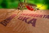Bất ngờ phát hiện nam thanh niên ở Đà Nẵng mắc virus Zika