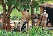 Phát hiện cả gia đình 11 người Pakistan chết bí ẩn trong đêm
