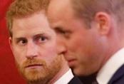 Vợ bị nói xấu sau lưng, Hoàng tử Harry tức giận và từng cạch mặt bạn thân thiết