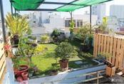"""Sân thượng bê tông 40m² """"biến hình"""" thành khu vườn xanh mát chỉ với 23 triệu đồng ở Đà Nẵng"""