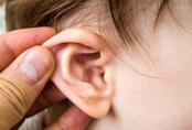 Chữa viêm tai giữa bằng cách này cả con nhỏ lẫn bố mẹ đều hết hẳn đau và khổ sở bấy lâu