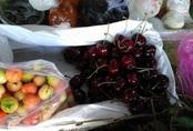 """Cherry Mỹ, Canada giảm giá """"sập sàn"""", nhà nhập khẩu lo lỗ vốn"""