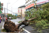 Thêm một nạn nhân ở Huế tử vong do bão số 5