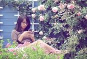 Khu vườn hoa hồng đẹp như cổ tích của mẹ đảm người gốc Hà Nội