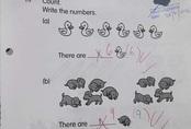 """Cô giáo yêu cầu đếm hình, học trò lớp 1 đưa ra đáp án """"3 vịt - 1 chó"""" liền bị gạch nhưng vẫn được rần rần khen ngợi"""