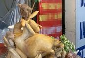 Dạo một vòng chợ Hà Nội: Giá gà cúng đa dạng, loại đắt và đẹp nhất rơi vào khoảng 300 nghìn đồng/kg